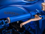 1 Harley Davidson Bucherer Blue edition (11)