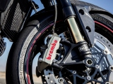 1 Triumph Speed Triple RS 2018 (6)